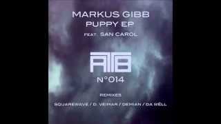 Markus GIBB (Puppy - Original Mix)