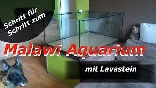 Malawi Aquarium mit Lavastein - Aufbaudoku