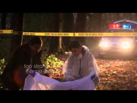 The Miranda's Rights Mystery series Mp3