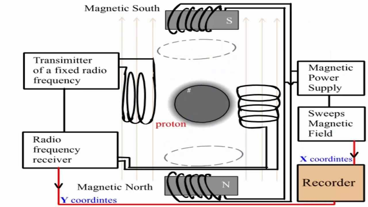 Simple Explanation Of The Proton Nmr Spectrometer Youtube