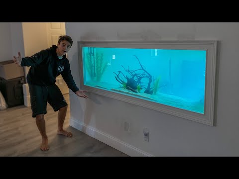 160 Gallon AQUARIUM In My Wall...
