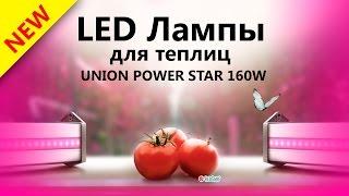 Светодиодные лампы для теплиц  UNION POWER STAR 160W / Фитолампы для овощей(Светодиодные лампы для теплиц Union Power Star 160W / Фитолампы для овощей Купить светодиодные лампы можно тут: ..., 2015-07-13T19:18:12.000Z)