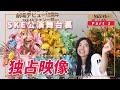 SKE48 12th Anniversary Fes 舞台裏密着 -前編- (Behind the scenes)