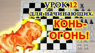 Шахматы для начинающих 12 |  Как играть конями!