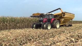 2014 Corn Harvest  near Medora Illinois