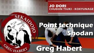 Préparation au Shodan : Bukiwaza Jodori par Greg Habert et Laurence Zettwoog