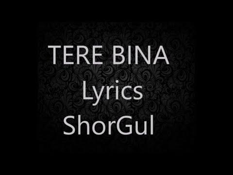 Tere bina Arijit singh's songs lyrics..shorgul movie
