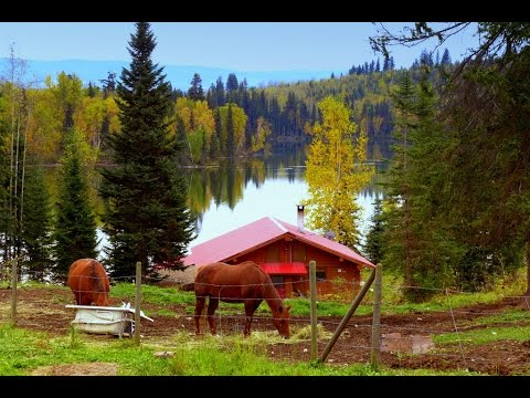 SOLD! 9.98 acres Lakefront Country Home & Perfect Hobby Farm in Horsefly, BC