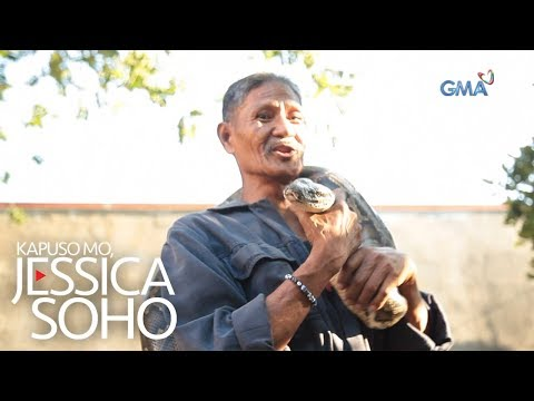 Kapuso Mo, Jessica Soho: Ang ahas sa pamilya ni Lolo Red