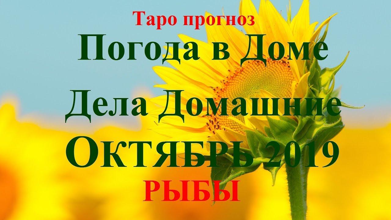 ДЕЛА Домашние – РЫБЫ — октябрь 2019. Прогноз Tarot.
