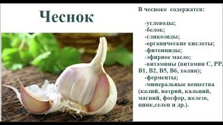 Лекарственные травы 32 фото с названиями лекарственных растений
