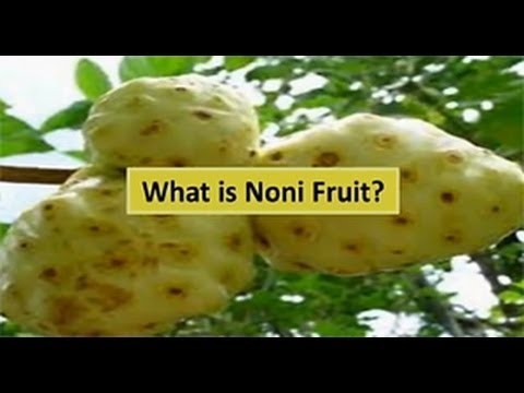 how to eat noni fruit