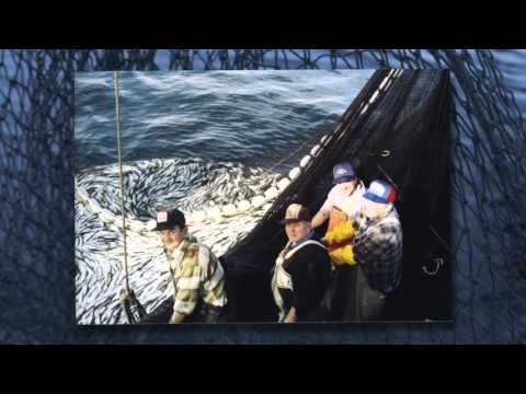 The History of Commercial Fishing in B.C.