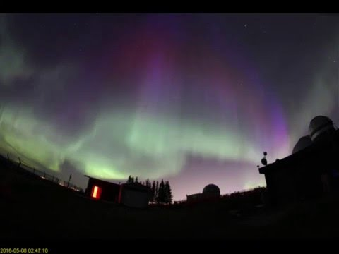 Awesome Aurora Above Calgary May 7 2016 by Larry McNish