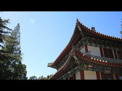 Study Abroad in Beijing
