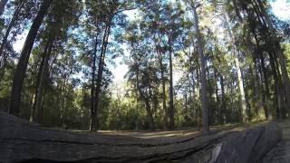 Murphys Glen Camp, Blue Mountains National Park, near Katoomba, NSW