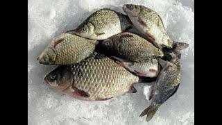 Зимняя рыбалка на Амуре 2021