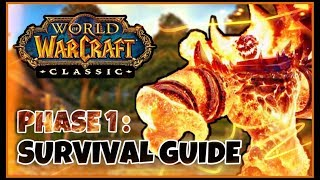Classic WoW Phase 1 and Launch Survival Guide (Leveling, Professions, Raiding, etc.)