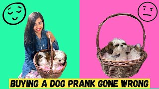 Buying New DOG PRANK on HER (Emotional)