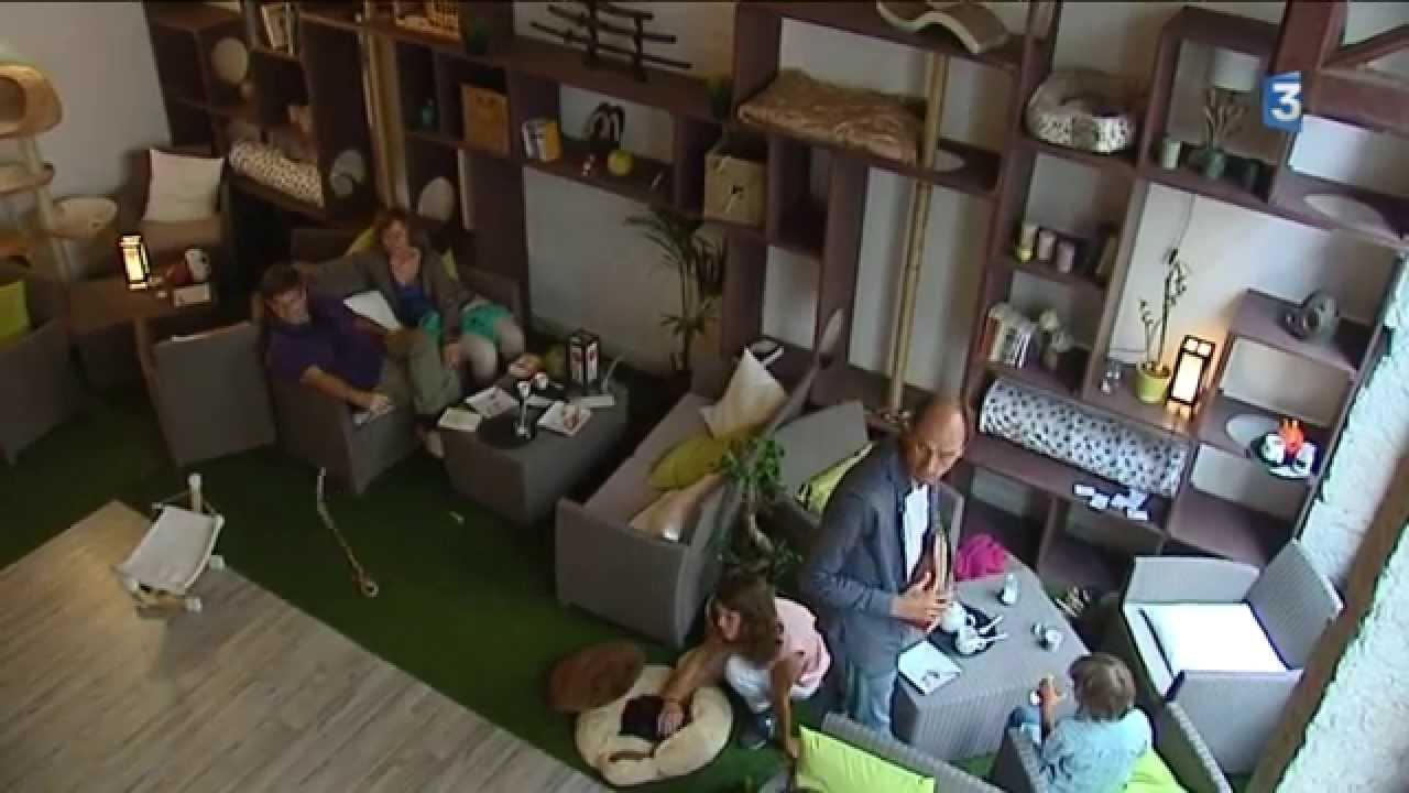 Bar A Cafe Lyon
