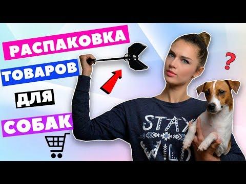 РАСПАКОВКА И ТЕСТИРОВАНИЕ ТОВАРОВ ДЛЯ СОБАК | DOG UNBOXING