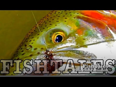 Thumbnail: FishTales: POOL TROUT FISH-OUT