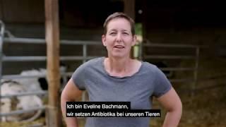 Eveline Bachmann - Antibiotika