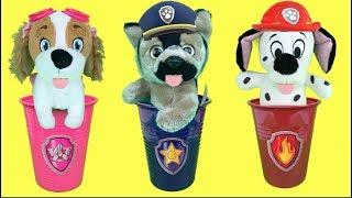 Aprende con juguetes de Paw patrol y los bebés: Regalo sorpresa de Ryder. Videos para niños