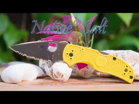 Spyderco C41SYL5 Native 5 Salt video_2
