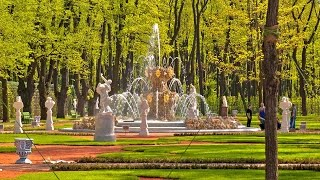 Летний Сад от Петра до наших дней. Санкт-Петербург