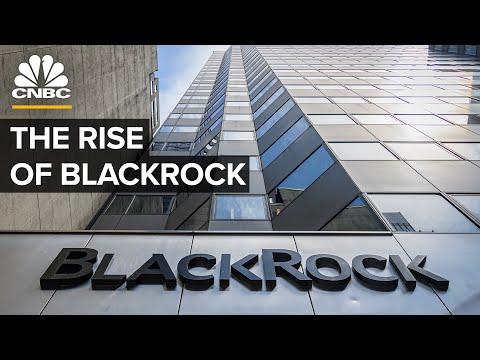 How BlackRock Became The World's Largest Asset Manager