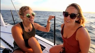 Ep. 10 Sailing the Tasman Sea into the Pacific and shark diving at Middleton Reef (Sail Surf ROAM)