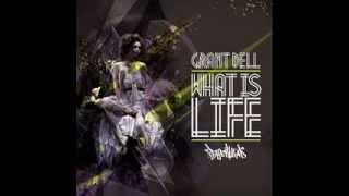 Grant Dell - What is life (David Devilla & Elisabeth Aivar remix)