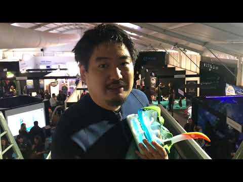 """Experience of """"Wild Dolphin Waterproof VR"""" in Laval Virtual ReVolution 2018"""