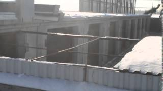 Хабаровский пункт временного содержания безнадзорных животных