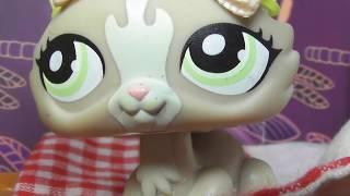 LPS сериал: Детский дом 14 серия