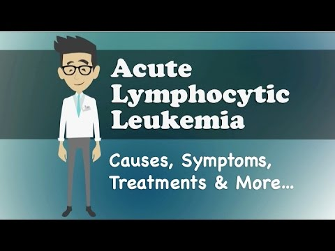 the characteristics symptoms and treatment of leukemia Chronic myeloid leukemia: symptoms & diagnosis  question 1 of 5 what proportion of newly diagnosed patients with chronic myeloid leukemia (cml).