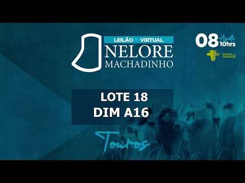 LOTE 18 DIM A16