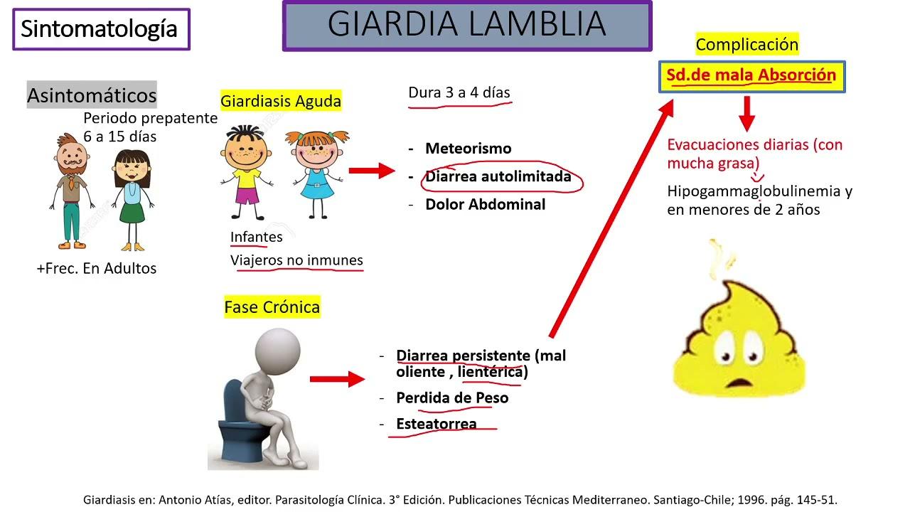 Giardiasis y amebas - Albendazol giardia posologia