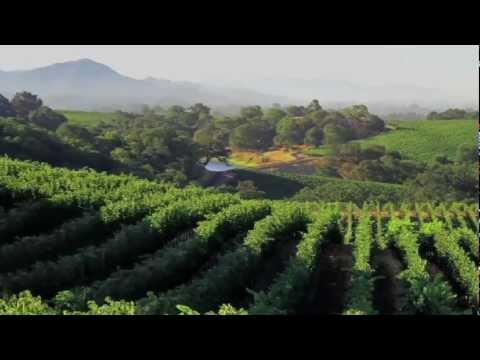 Georgia-Pacific and E. & J. Gallo Winery