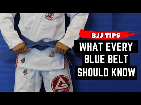 What to expect from a BLUE BELT? | BJJ Tips