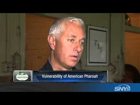 Todd Pletcher speaks with SNY about Belmont Stakes