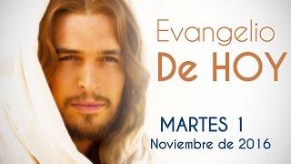Evangelio de Hoy Martes 1 de Noviembre 2016 . Bienaventurados