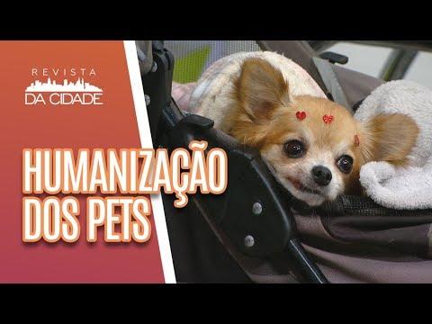 Os Males da Humanização de Pets - Revista da Cidade (13/07/18)