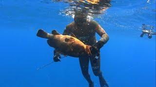 Deep Spearfishing Moments