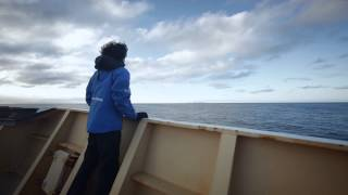 Bjørnøya (Bear Island) - English Trailer