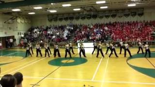 Langley Dance Team--Mclean game