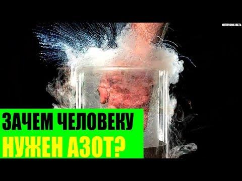 Зачем человеку так нужен азот?