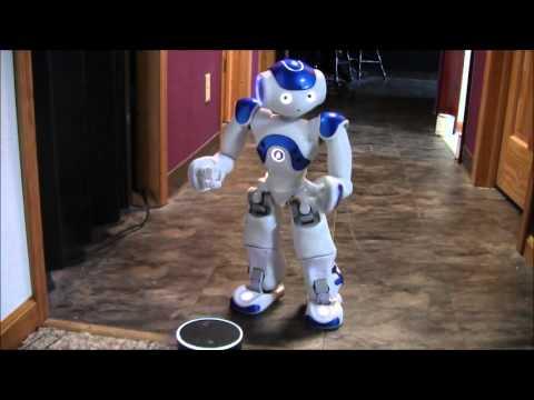 Amazon Echo Alexa meets Nao Robot