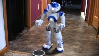Amazon Echo Alexa meets Nao Robot
